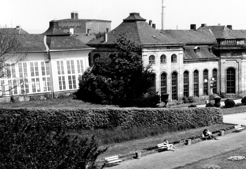 Blick auf die Nordseite der Orangerie. Sehr gut erkennbar ist links die 1985 nach historischem Vorbild wiederhergestellte durchgehende Fensterfassade des nördlichen Treibhauses. (Foto: Altstadtverein)