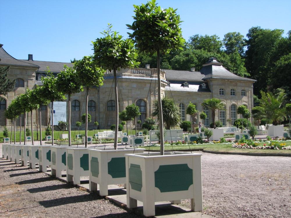 """Im Obergeschoss des Westpavillons des """"Lorbeerhauses"""" befindet sich seit Mai 2011 das neue Domizil der """"Orangerie-Freunde"""". (Foto: Cramer)"""