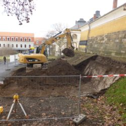 Baustart Kamelienhaus